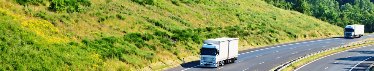 transport-opinie.pl